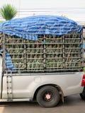 De ananassen van het vervoer Stock Afbeeldingen