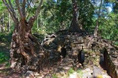 De Angor wat tempel distroyed door bomen Stock Foto's