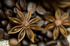 De anijsplant en de koffiesamenstelling van de ster Royalty-vrije Stock Afbeelding