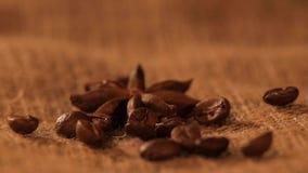 De anijsplant op het ontslaan, en dalende koffiebonen, sluit stock footage
