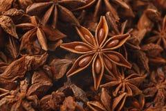 De anijsplant speelt kruidclose-up, abstracte aromatische achtergrond mee royalty-vrije stock afbeeldingen