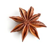 De anijsplant van de ster Royalty-vrije Stock Afbeeldingen