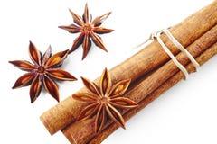 De anijsplant van de ster met kaneel Royalty-vrije Stock Afbeelding