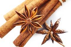 De anijsplant van de ster met pijpjes kaneel Stock Afbeelding