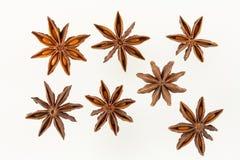 De anijsplant van de ster (witte achtergrond) Stock Foto