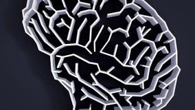 De animatie hoge definitie van het hersenenlabyrint stock footage