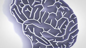 De animatie hoge definitie van het hersenenlabyrint stock videobeelden