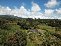 De antenne van Hawaï van de vulkaanhelling Stock Afbeelding