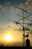 De antenne van TV in zonsondergangtijd Royalty-vrije Stock Fotografie