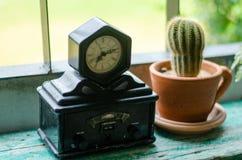 De antieke klokken en de cactus worden gevestigd door het venster 3 royalty-vrije stock foto