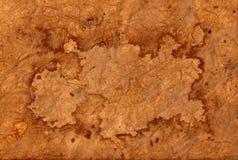 De antieke oude achtergrond van de piraatkaart Stock Afbeeldingen