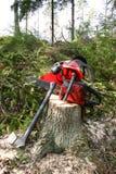 De apparatuur van het registreerapparaat in bos royalty-vrije stock fotografie
