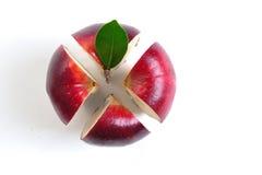 De appel van de dwarsdoorsnede Stock Afbeeldingen