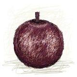 De appel van de ster Stock Afbeeldingen