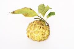 De appel van de vla op wit. Royalty-vrije Stock Foto