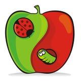 De appel van Yin yang Royalty-vrije Stock Afbeeldingen