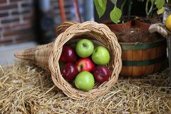 De appelen is een van het het ontwerpelement van het mandbeeld markt van het verse fruitlandbouwers royalty-vrije stock afbeeldingen