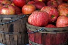 De Appelen van de herfst stock afbeeldingen