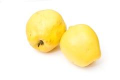De appelen van de kweepeer die op wit worden geïsoleerdo Royalty-vrije Stock Fotografie