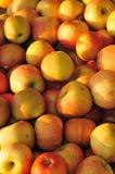 De appelen van de markt Stock Foto