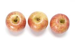De appelen van het feest Stock Foto