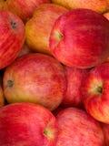 De appelen van het fruit Stock Foto's