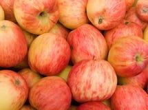 De appelen van het fruit Stock Afbeeldingen