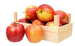 De appelen van Jonagold in mand Royalty-vrije Stock Fotografie