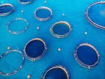 De aquicultuur blauw water van de zalmviskwekerij Lucht hoogste mening royalty-vrije stock afbeelding