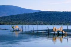 De aquicultuur van Varano van het meer Stock Afbeeldingen