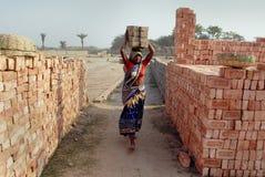 De Arbeid van de vrouw op Indisch baksteen-Gebied Stock Afbeeldingen