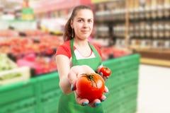 De arbeider die van de kruidenierswinkelopslag close-up van tomaat voorstellen royalty-vrije stock foto