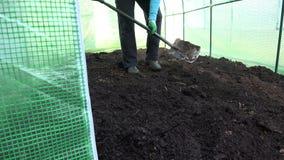 De arbeider graaft met schopcompost in nieuwe serre stock video