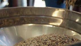 De arbeider voegt gebraden niet koffiebonen in groot aluminium om vat in koffiefabriek toe stock videobeelden
