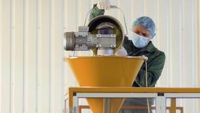 De arbeider vult de machine met droge thee, theefabriek stock videobeelden