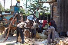 De arbeiders doen maïs in zakken royalty-vrije stock afbeeldingen