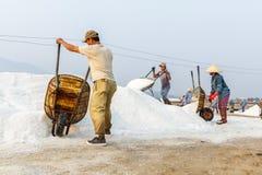 De arbeiders dumpen zout bij de zoute gebieden van Hon Khoi in Nha Trang, Viet Royalty-vrije Stock Afbeeldingen