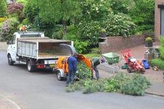 De arbeiders felling een boom en gebruiken houten chipper Stock Foto's