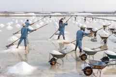 De arbeiders maken zoute stapels bij de zoute gebieden van Hon Khoi in Nha Trang Royalty-vrije Stock Afbeeldingen