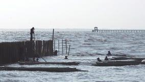 De arbeiders stellen bamboestokken voor bescherming op de kusterosie stock footage