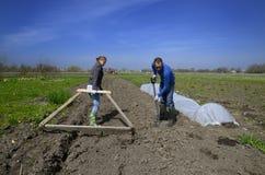 De arbeiders van de landbouw in Lets platteland Stock Afbeelding