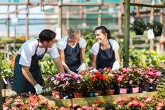 De arbeiders van de tuin het werken Stock Afbeelding