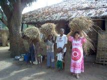 De arbeiders van Guinea-Bissau in Afrika Stock Fotografie