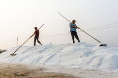 De arbeiders vormen een zoute stapel bij de zoute gebieden van Hon Khoi in Nha Tra Royalty-vrije Stock Foto's