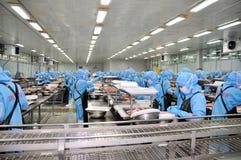 De arbeiders werken in een installatie van de zeevruchtenverwerking voor het uitvoeren garnalen Royalty-vrije Stock Fotografie