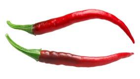 De Arbol chilies, ścieżki Zdjęcie Royalty Free