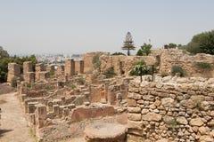 De archeologische plaats van Oud Carthago, Tunesië, Afrika royalty-vrije stock afbeelding