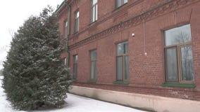 De architecturale oude rode baksteen die op de achtergrond van Kerstbomen voortbouwen, de winter sneeuwt en de wind blaast stock footage