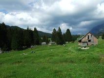 De architectuur van alpen en landbouwbedrijven van het Obertoggenburg-gebied royalty-vrije stock foto