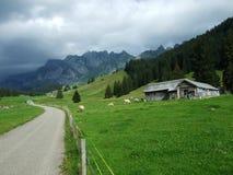 De architectuur van alpen en landbouwbedrijven van het Obertoggenburg-gebied royalty-vrije stock afbeelding
